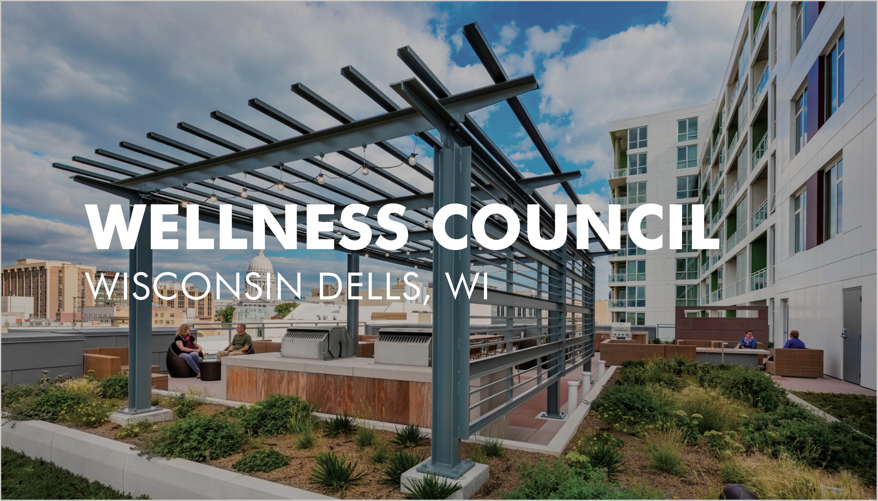 Wellness Council One Day Summit 2019 Image